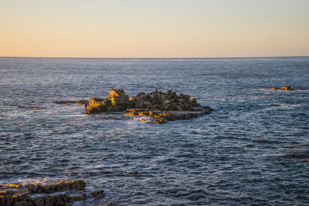 - One of the sea lion colonies at sunset