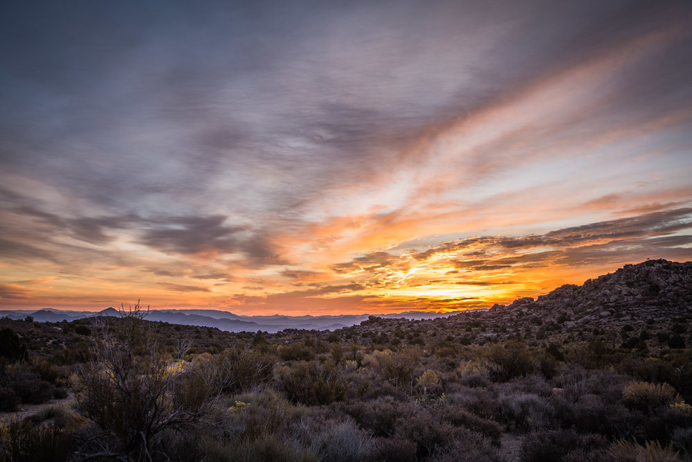 - An incredible sunrise at the southern end of the national monument, surrounded by the vegetation of the Grand Basin Desert ecosystem.