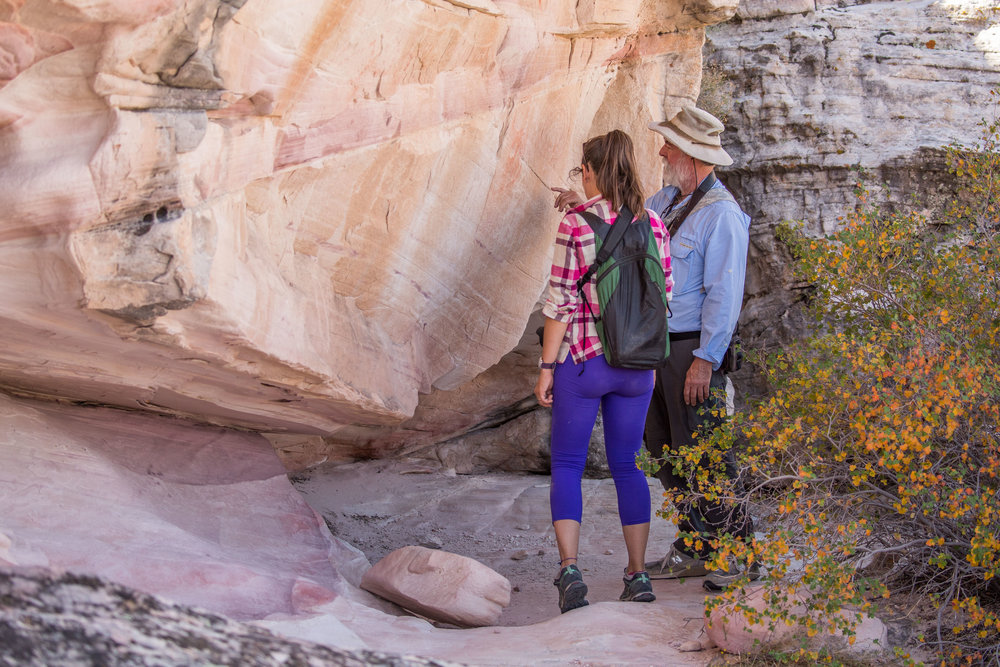 - Jim explaining about some of the petroglyphs and the patina or desert varnish, a coating on the rock left by bacteria and fungi. It adds a darker layer to the rock, which gives an insight into the time when these stories were inscribed.