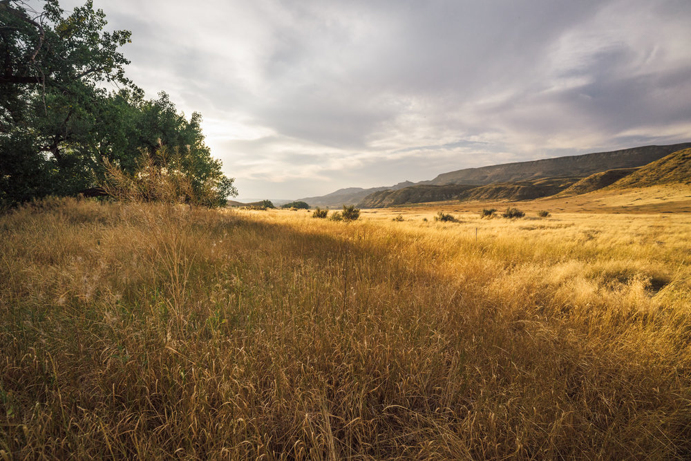 - Beyond the banks the landscape is a wild one, with beautiful grasslands that are home to hundreds of prairie dogs.