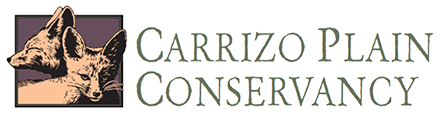 carrizo_logo_new-1.png