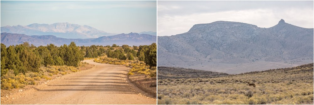 - Left: The road through Coal Valley in Basin and Range National Monument was in good shape when we visited in November 2017. Right: A coyote in Garden Valley.