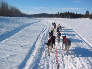Iditarod Trail on Kuskokwim River, between Nikolai and McGrath