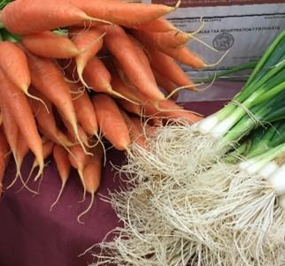 carrots-onions.jpg