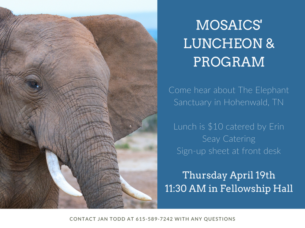 Mosaics' Luncheon & Program April 2018 (1).png