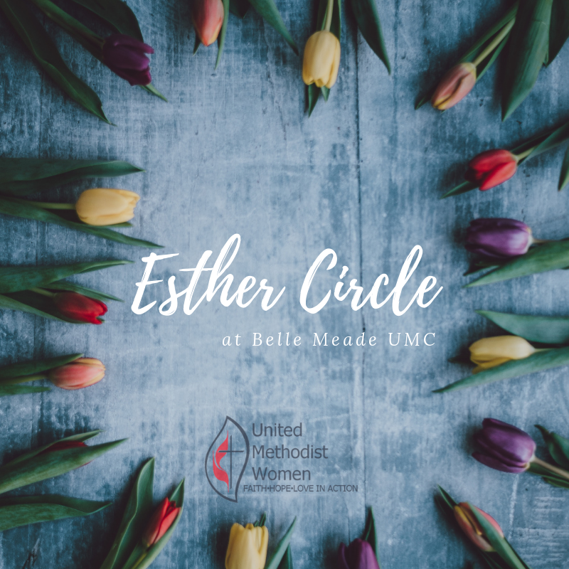 esther circle.png