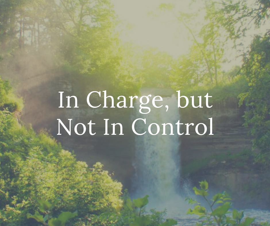 In Charge, but Not In Control.png