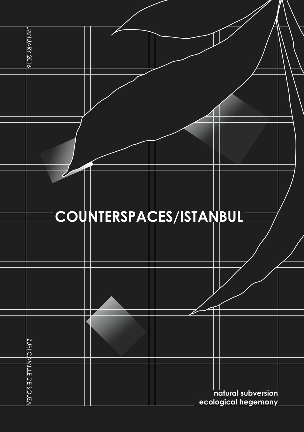 Zuri Camille De Souza Counterspaces