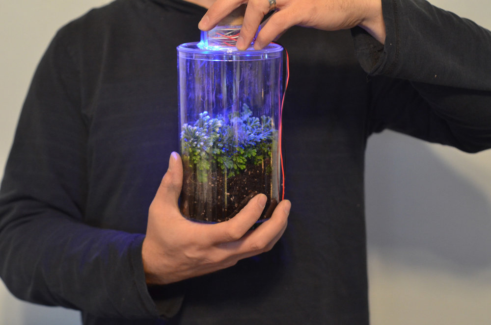 KEEP-US-ALIVE---TERRARIUM-WITH-GROW-LIGHT (LEFT IMAGE).jpg