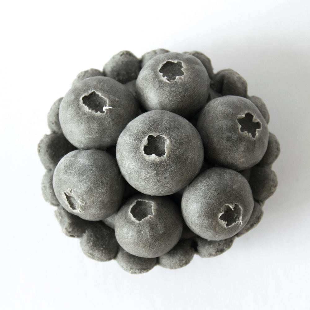 smerolla_blueberry_tartlet.jpg