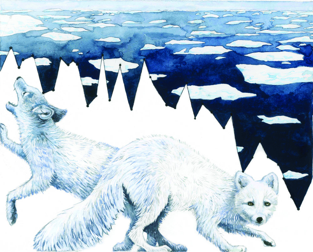 Habitat Degradation_ Arctic Sea Ice.jpg