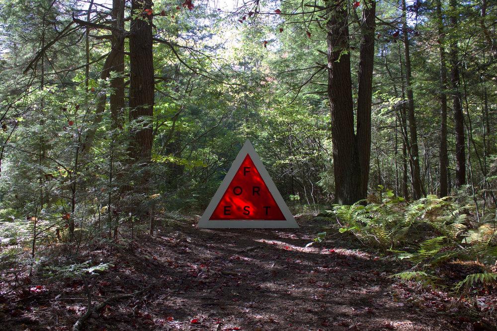 DBB-HF-HH-Forest-Lantern No.2.jpg