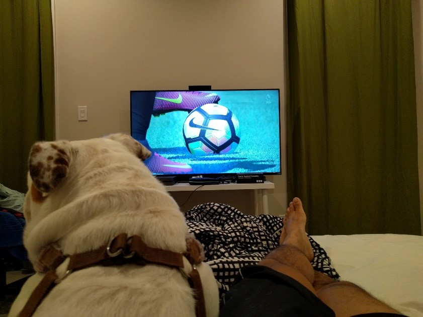 unwinding with FIFA and the dawg