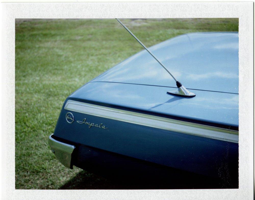 Blue Impala, Mississippi, 2014