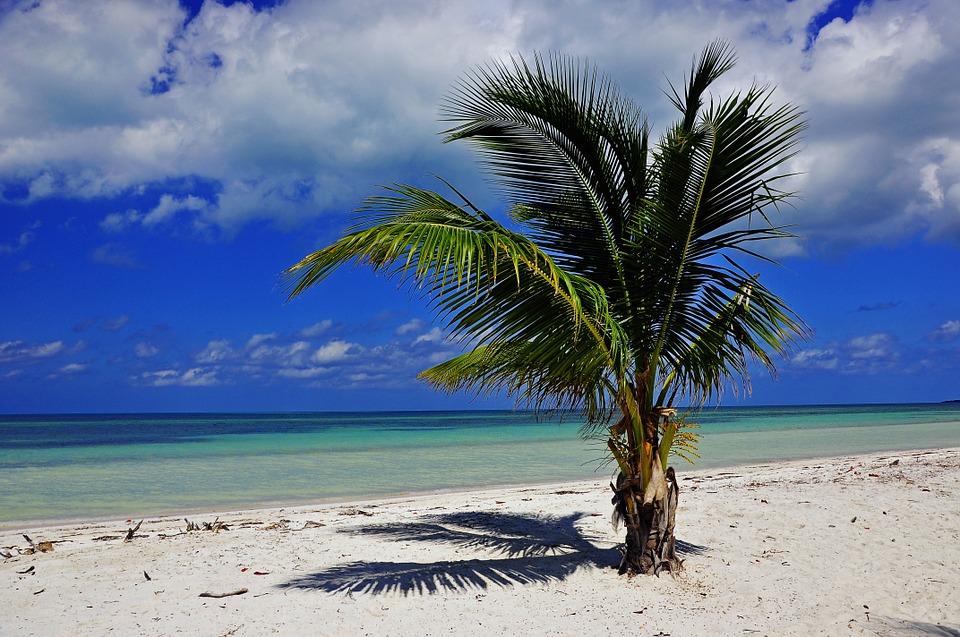 CUBA 2.jpg