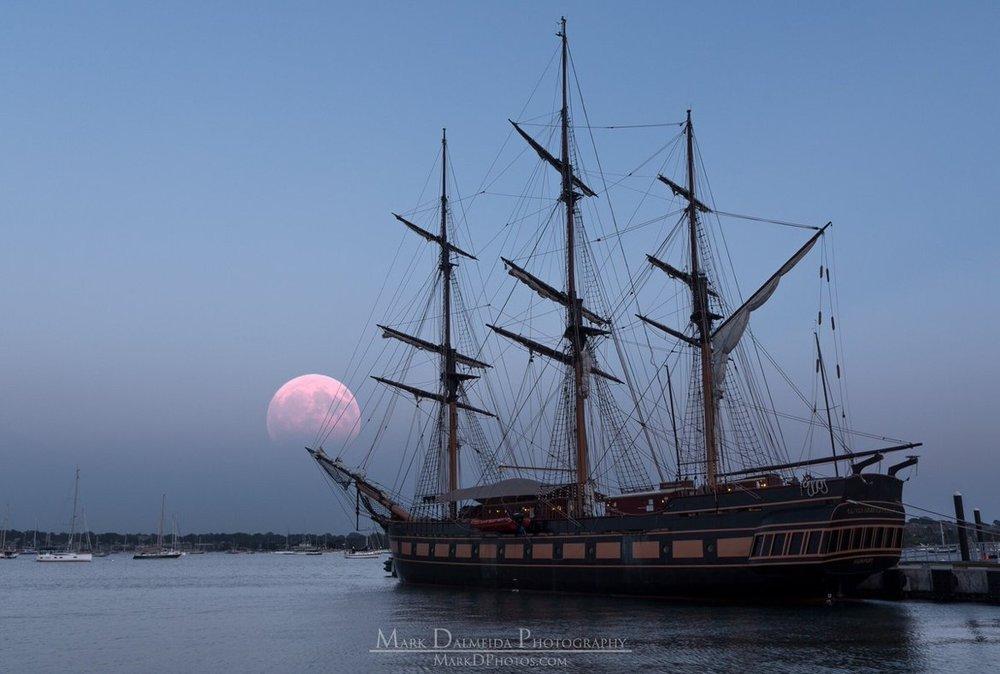 Mark Dalmeida Photo - Full Moon.jpg-large.jpg