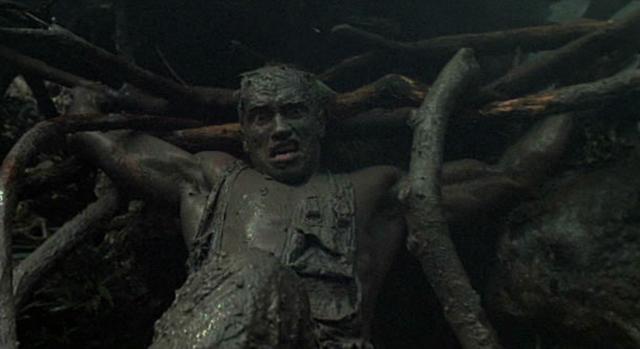 Predator - Arnold