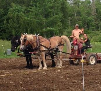 farming .jpg