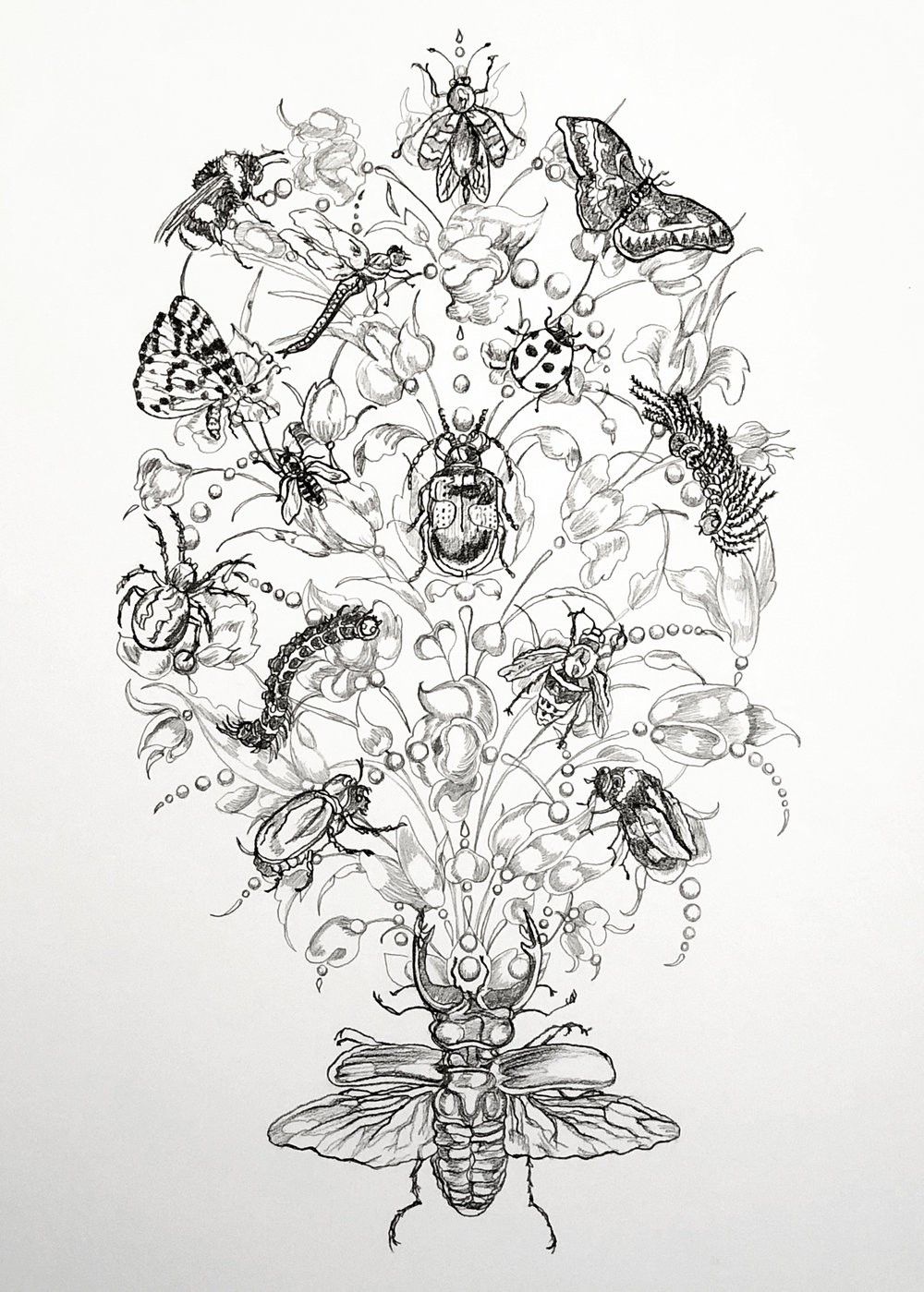 "Naturalia Bouquet No.2  ©2018 Graphite on paper 24"" x 18"""