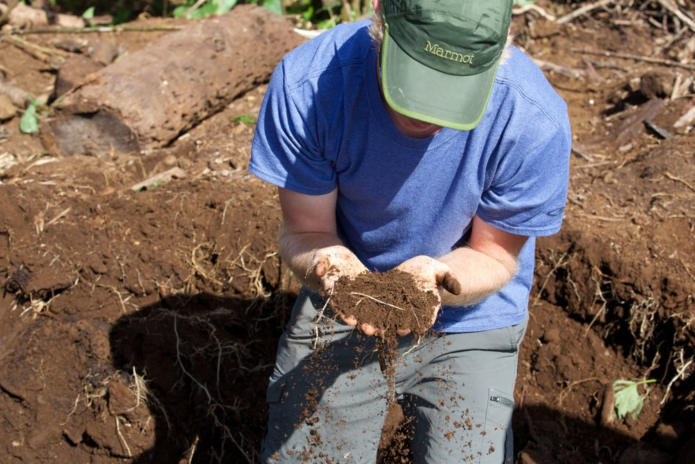 An agronomist at work at Hana Ranch on Maui