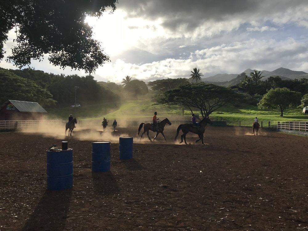 Future generations of cowboys practicing roping at Hana Ranch.