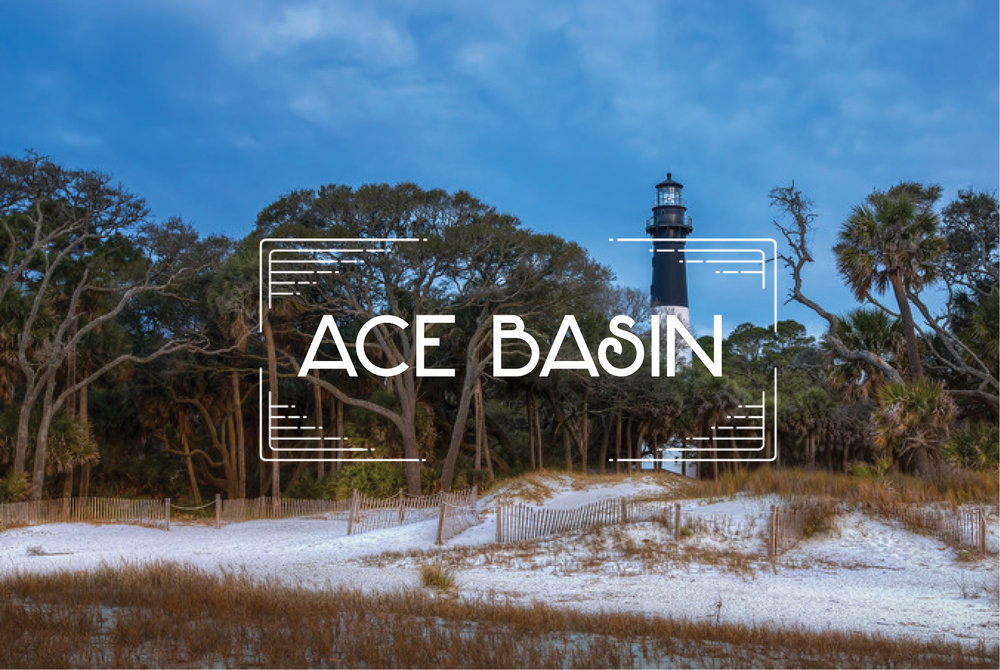 ACE Basin