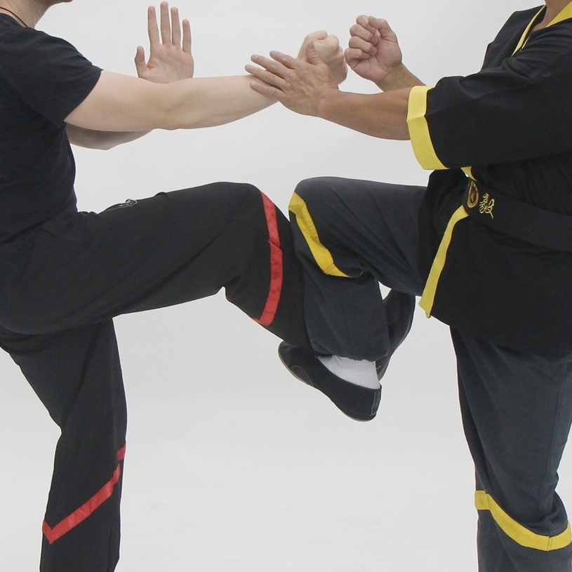 Practical Wing Chun Kicking NYC
