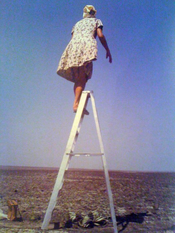 Maria Reiche atop one of the ladders she used to study and map the Nazca lines in Peru. Photo by Bruce Chatwin.