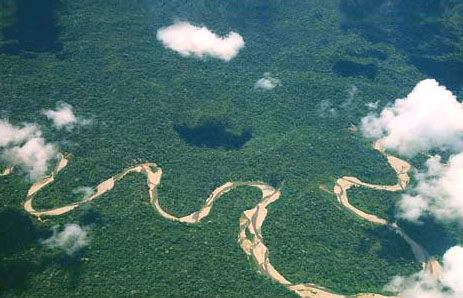 An Aerial View of the Amazon weaving its way through the manu reserve