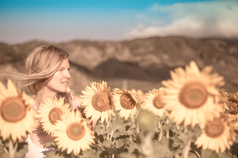 SABINE_SUNFLOWER_WEB-1.jpg