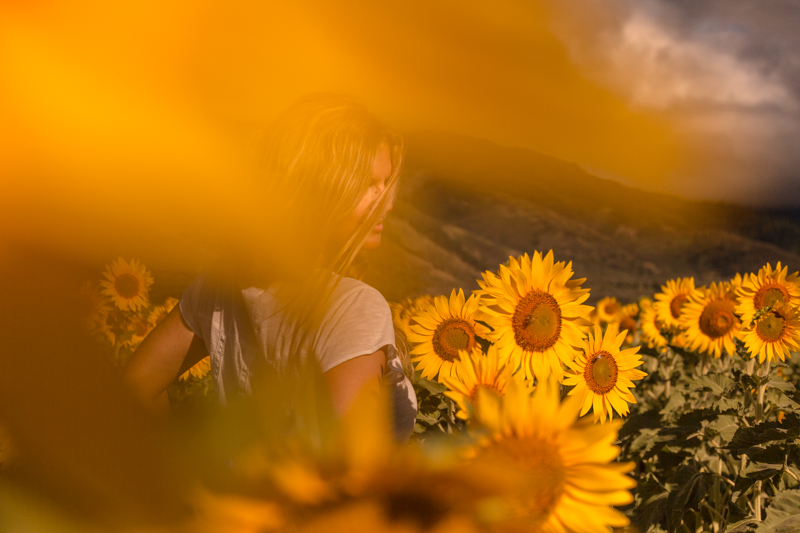 SABINE_SUNFLOWER_WEB-9.jpg