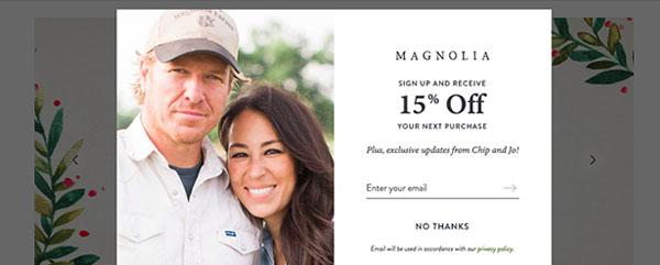 Magnolia | Lead Magnet Example