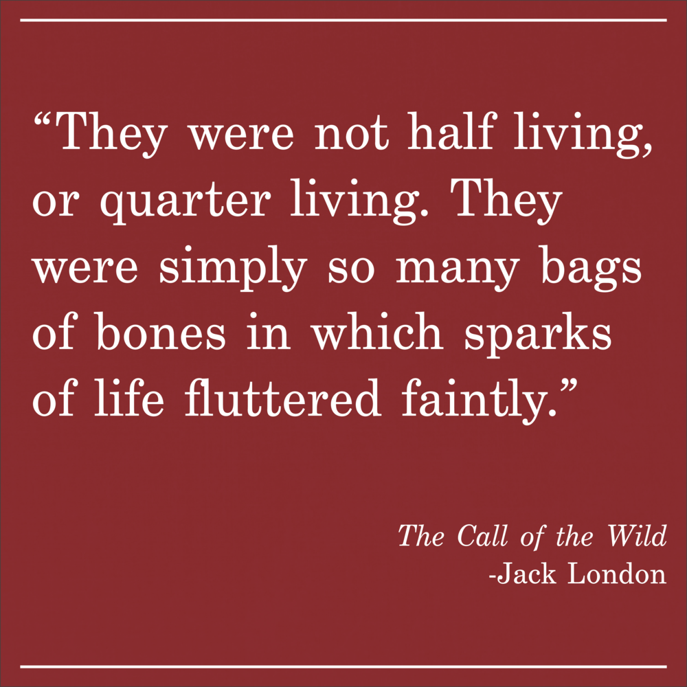 Daily Quote The Call of the Wild Jack London