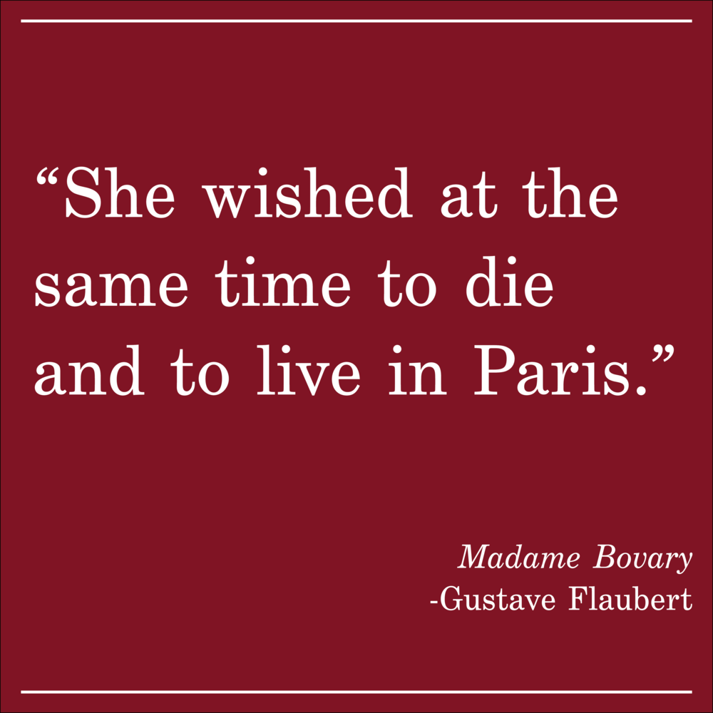 Daily Quote Madame Bovary by Gustave Flaubert