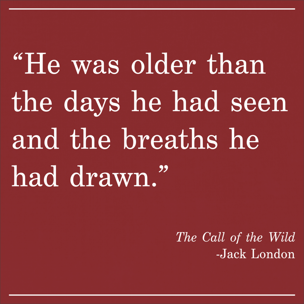 Daily Quote The Call of the Wild by Jack London