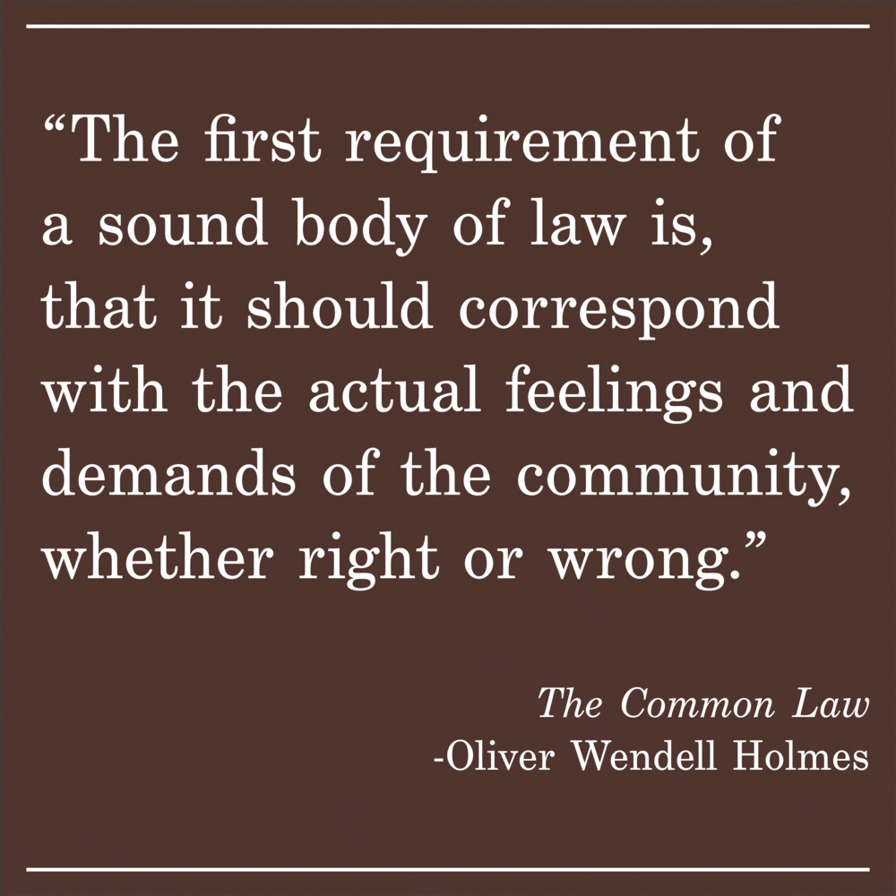 Daily Quote The Common Law by Oliver Wendell Holmes