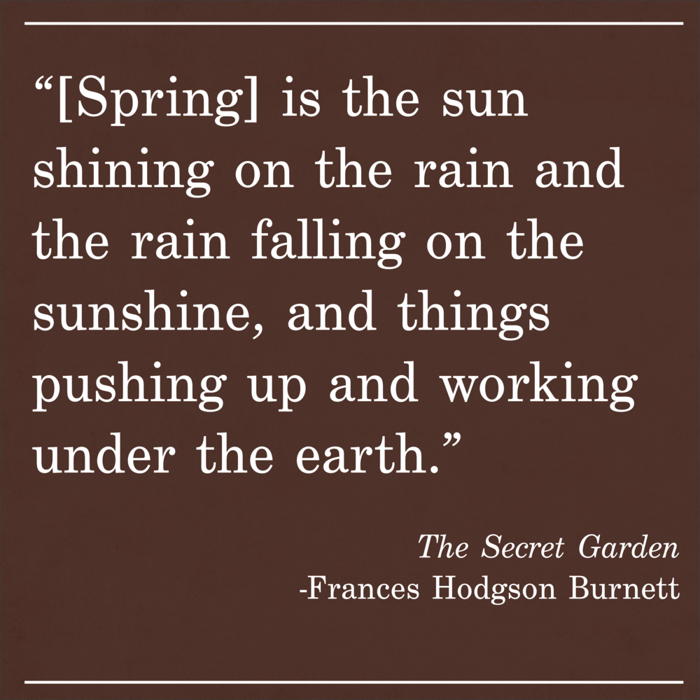 Daily Quote The Secret Garden by Frances Hodgson Burnett