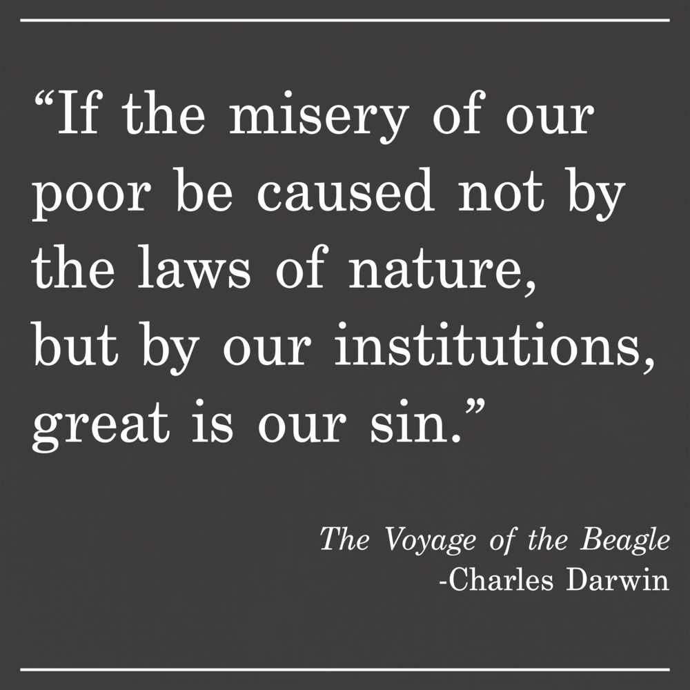 Daily Quote The Voyage of the Beagle by Charles Darwin