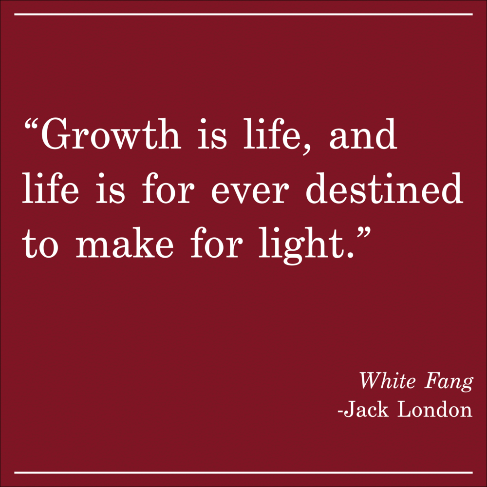 Daily Quote White Fang by Jack London