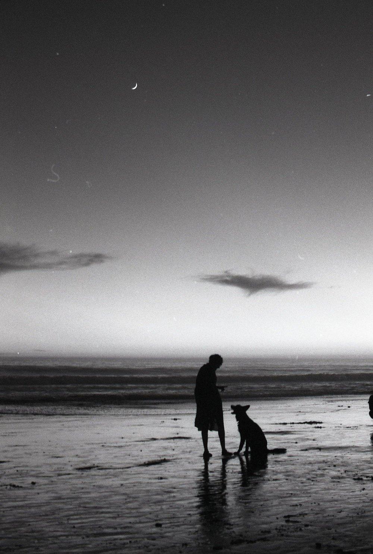 Photo by Premstar Santana | Santa Barbara, 2017 | 35mm Film ©premstarsantana