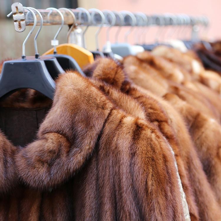 fur-storage.jpg