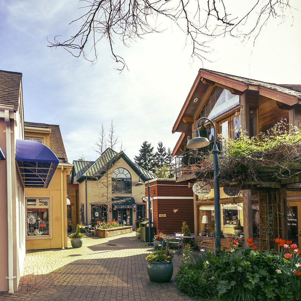 Langley Village