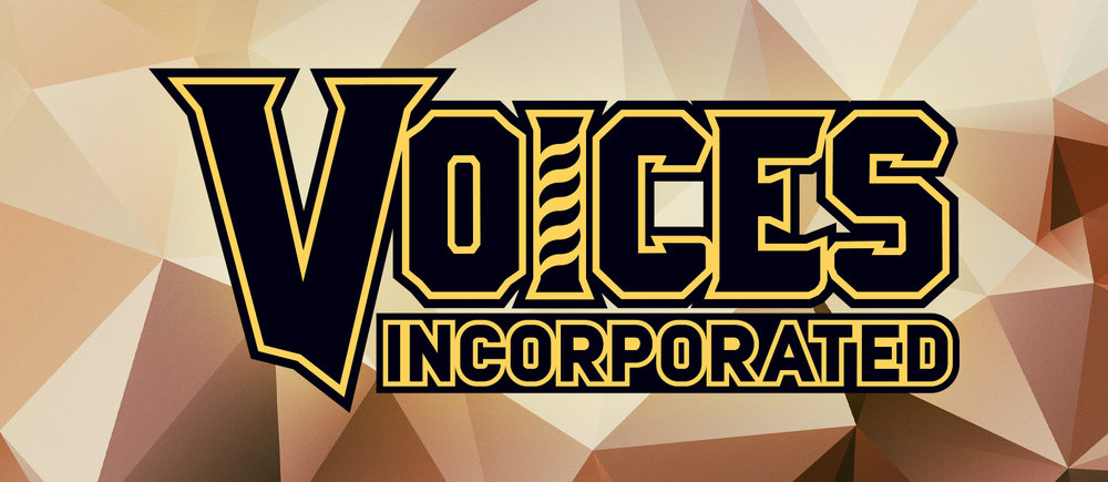VoicesInc_FBCover_dark_b.jpg