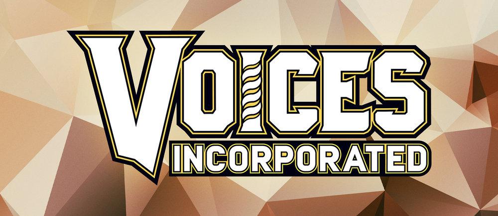VoicesInc_FBCover_light.jpg
