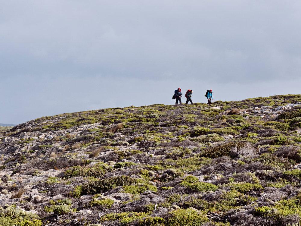 kangaroo-island-hikes.jpg