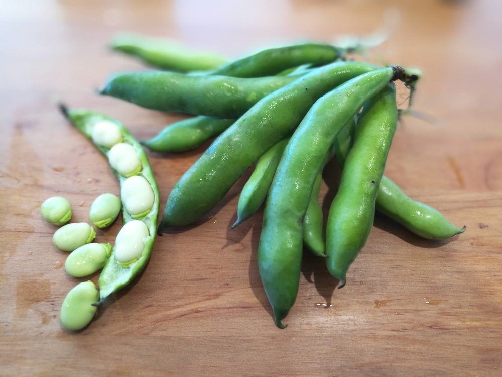 Fresh as broad beans straight from the pod.