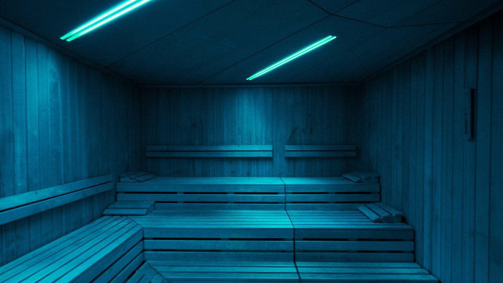 web-sauna.jpg