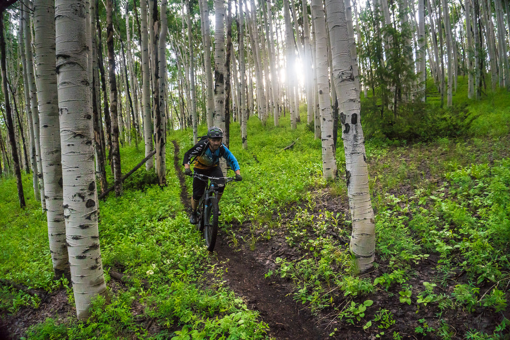Riding mountain bikes in the Spring is a one of the best times to be on the trail.
