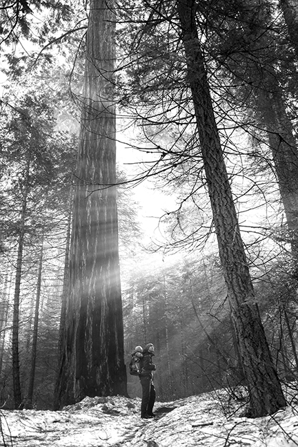 Morning hike in Sequoia National Forest with my husband and daughter. Photographed by Lillian Short.