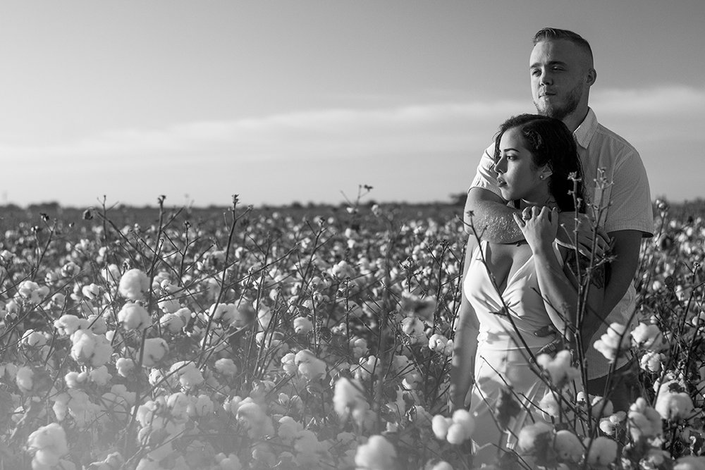 Mini portrait photo session in a cotton field with a couple celebrating their one year wedding anniversary. Photographed by Lillian Short in September 2017 south of Fresno in Lemoore, California.